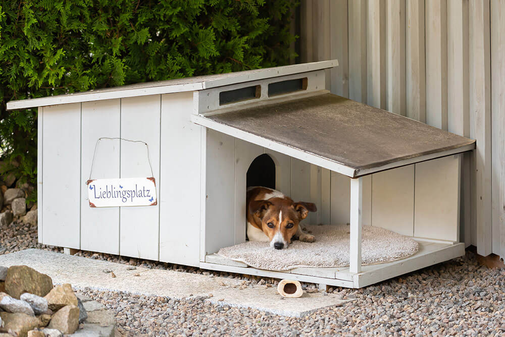 Hundehütte isolieren und heizen